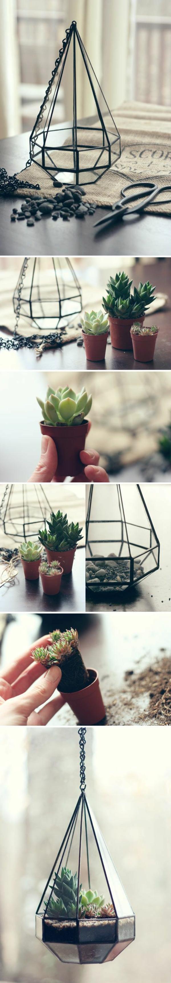terrarium pflanzen terrarium selber bauen dekoartikel ideen