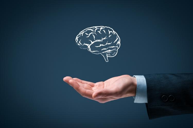 Emotionale Intelligenz das gehirn und unsere emotionen