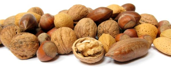 Omega 3 Fettsäuren Omega 6 Fettsäuren nahrung fürs gehirn