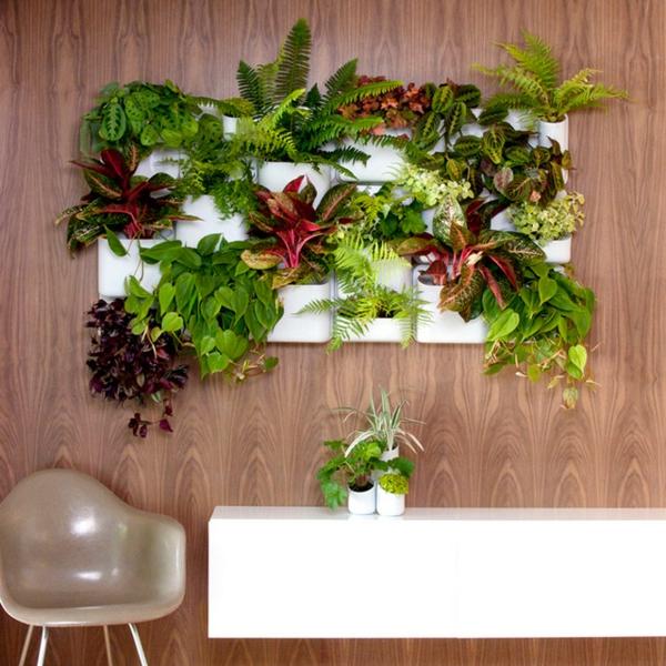 blumendekoration selber machen lebendige wanddeko topfpflanzen