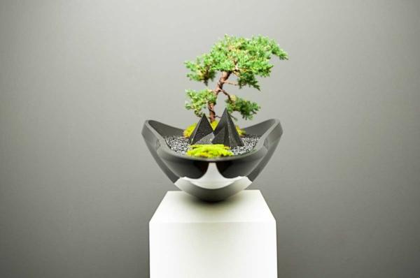 blumenkübel design bonsai baum adrian magu