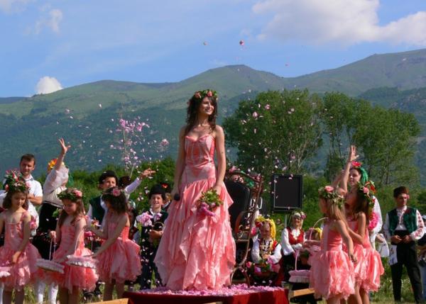damaszener rose festival bulgarien