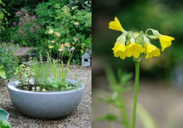 gartenteich bauen gelbe blüten keramik