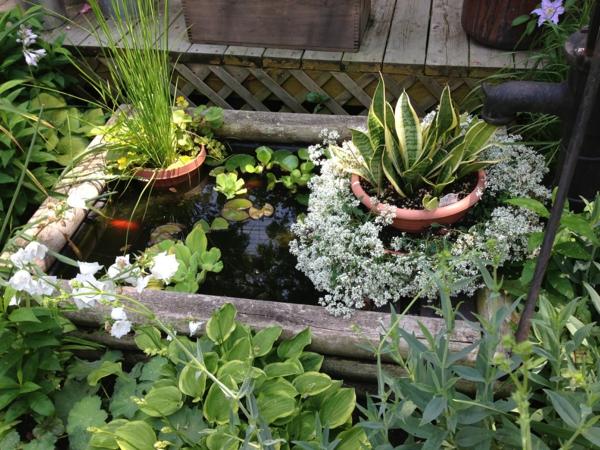 gartenteich bauen mini holzbohlen wasserlilien fische