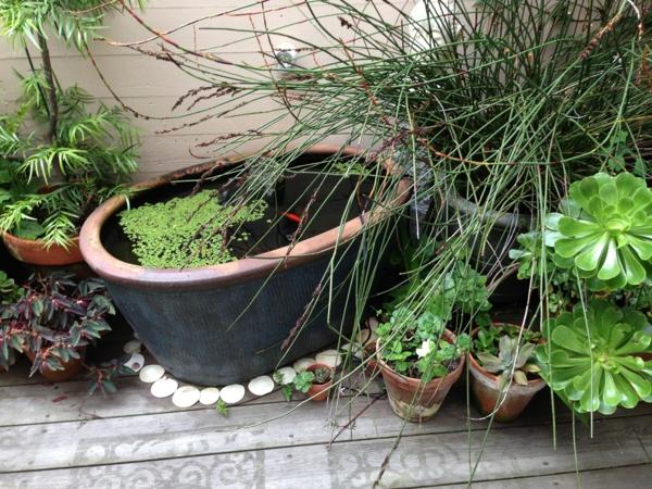 gartenteich bauen keramik blumentopf