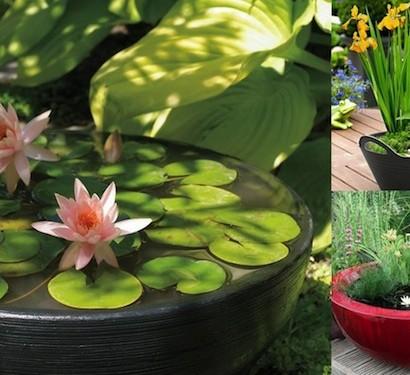 mini gartenteich bauen kleine oasen im garten oder auf. Black Bedroom Furniture Sets. Home Design Ideas