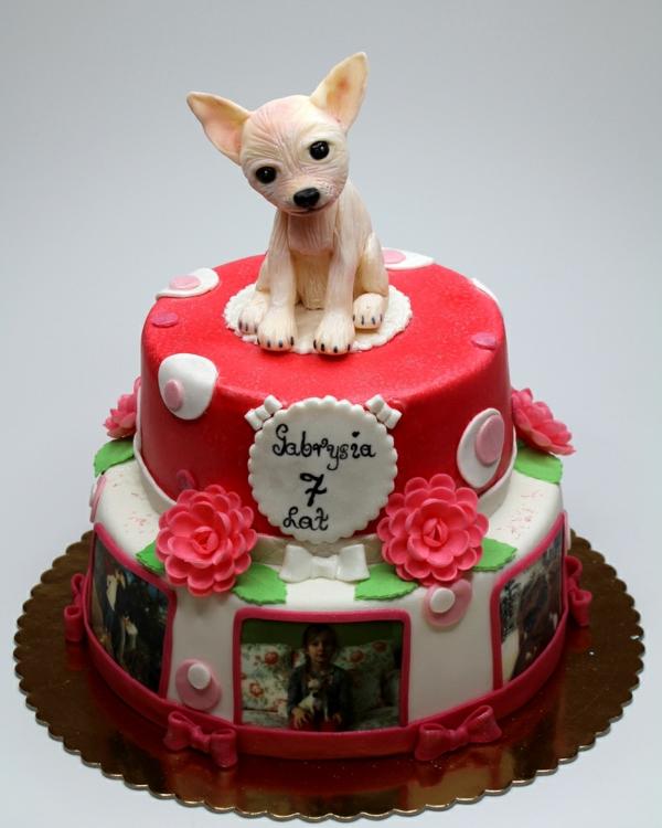 Birthday Cake With Chiuaua Dog