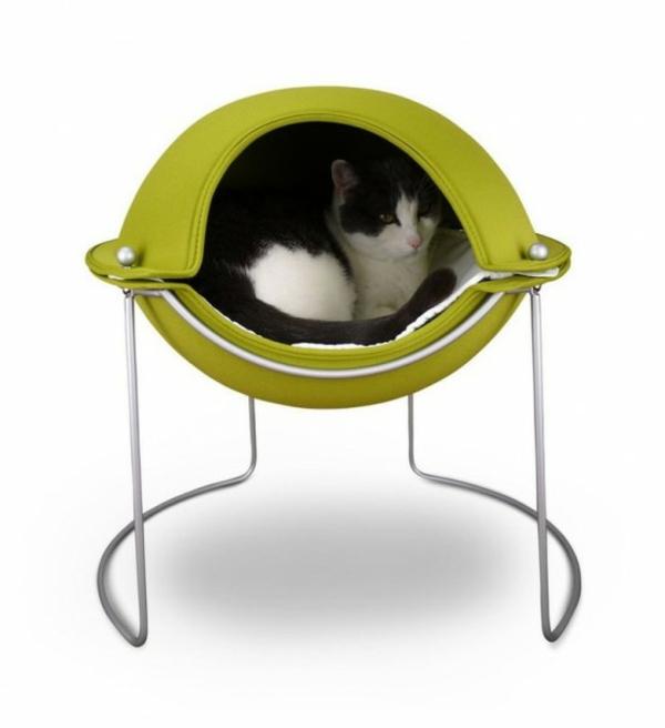 hauskatze verwöhnen katzen möbel bett designer möbel