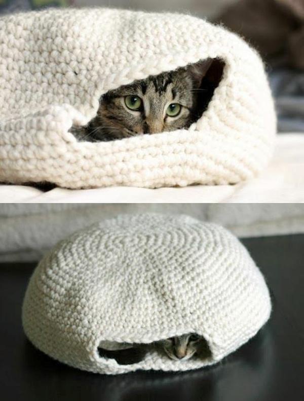 hauskatze verwöhnen katzen möbel bett gestrickt