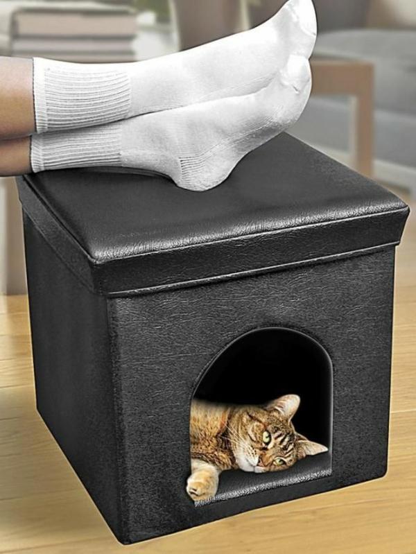 hauskatze verwöhnen katzen möbel bett hocker mit öffnung