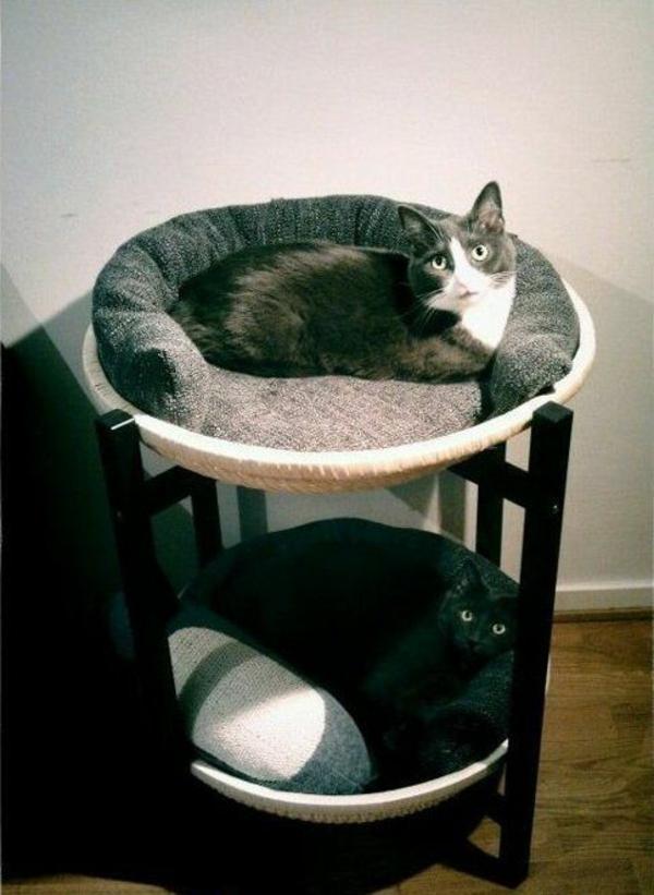 haus katzen verwöhnen katzen möbel bett selber bauen