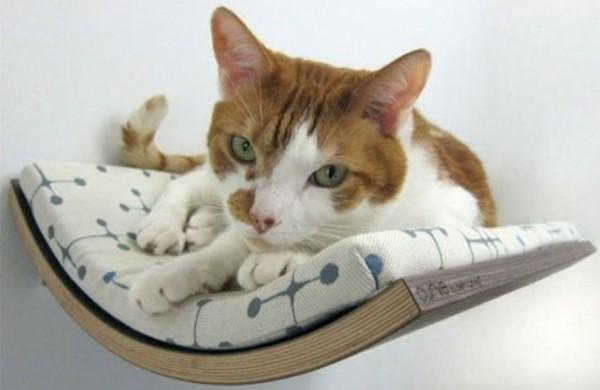 Katzen katzenspielzeug katzenbabys freshideen 1 for Arredamento per gatti