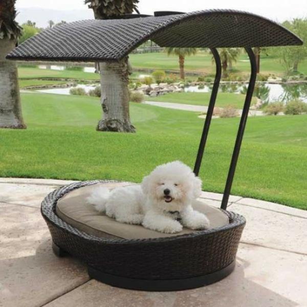 hundebett selber bauen außenbereich rattansessel mit sonnenschutz