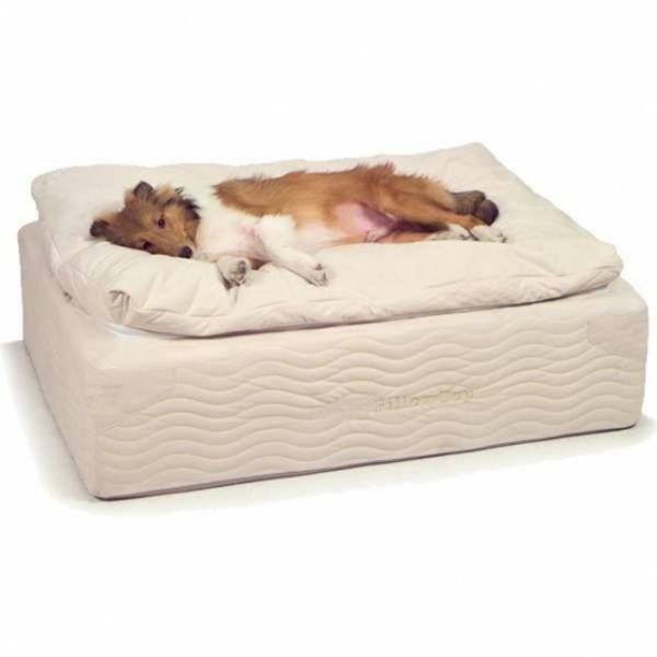 Dog Orthopedic Bed Too Warn