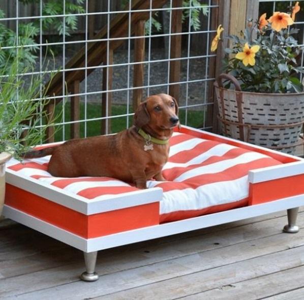 hund betten selber bauen schublade mit kissen im garten