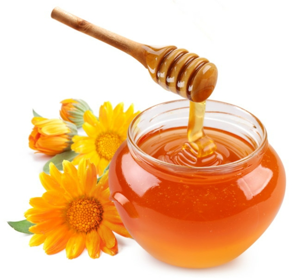 Vanilleeis Mit Honig Rezep