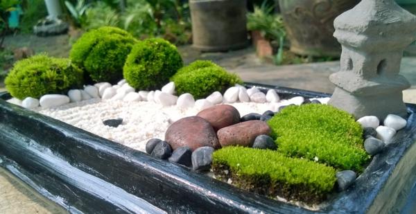 kleine gärten anlegen zen garten miniatur