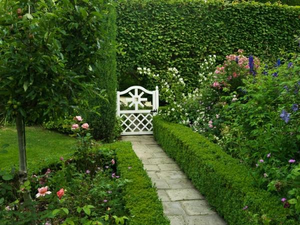 kleinen vorgarten gestalten hecke