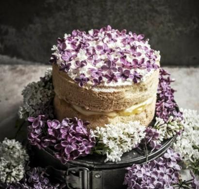 Einfaches Rezept Fur Einen Leckeren Kuchen Ohne Zucker