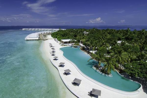 malediven urlaub pool lagune palmen strand weißer sand
