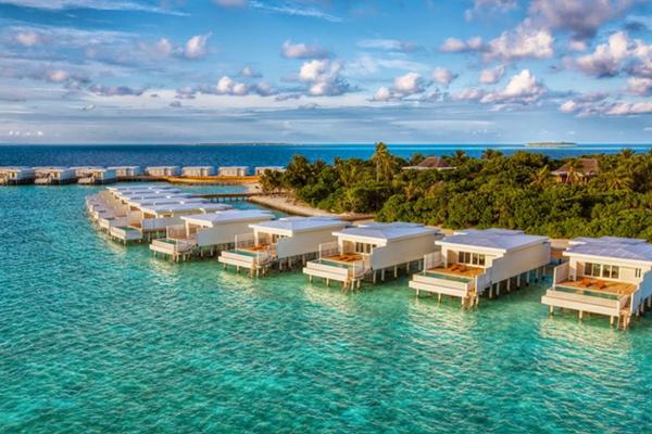 malediven urlaub wohneinheiten strand  palmen