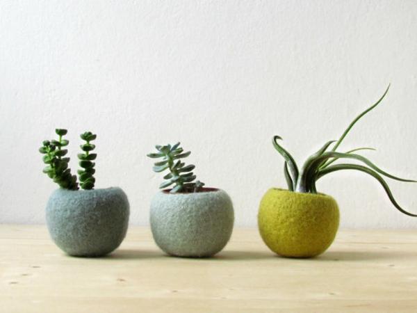 pflanzenkübel filz handgemacht rund naturfarben sukkulenten