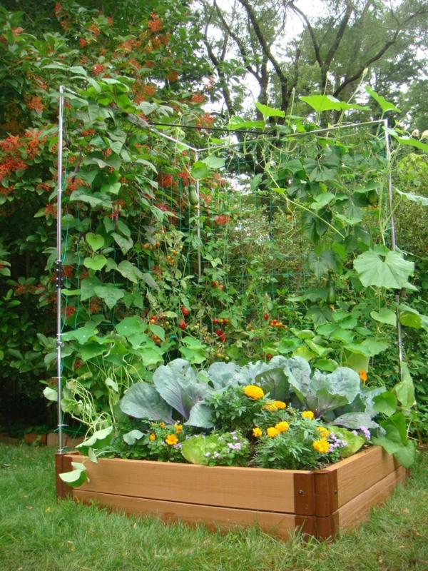 pflanzkübel blumentöpfe gartenkasten pflanzen anbauen