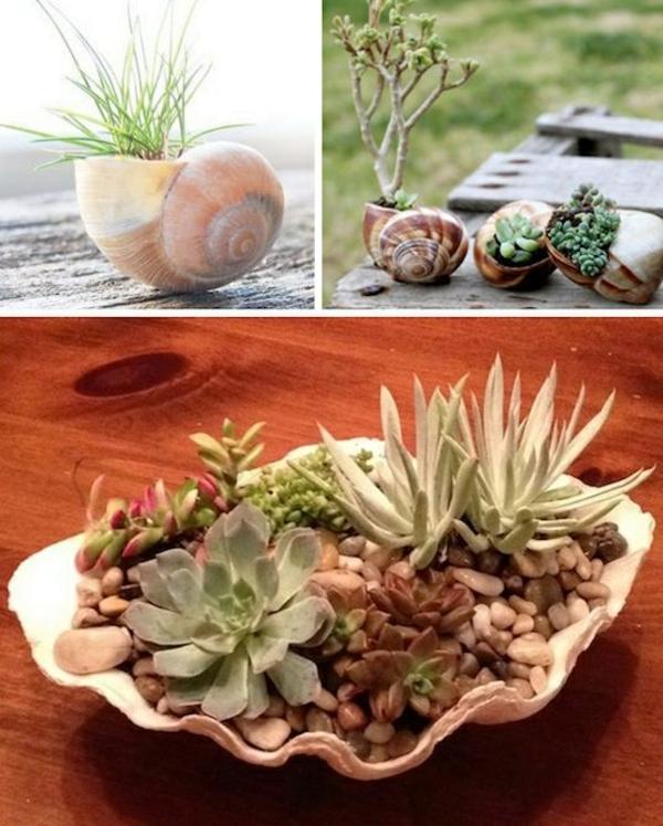 Originelle Pflanztöpfe Aus Gebrauchten Gegenständen Selber Machen Mini Garten Aus Sukkulenten Selber Machen