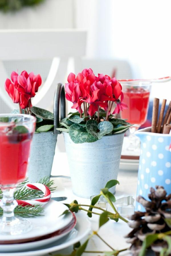 rote Zyklamen tischdeko blumen zimmerpflanzen