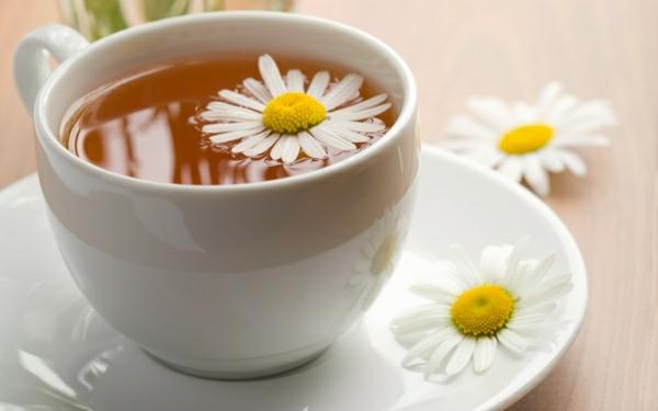 tee trinken tasse blume kräuter gesund kamilentee