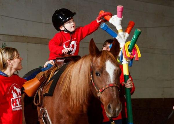 tiergestützt-tiere-als-therapie-pferd-tiertherapie