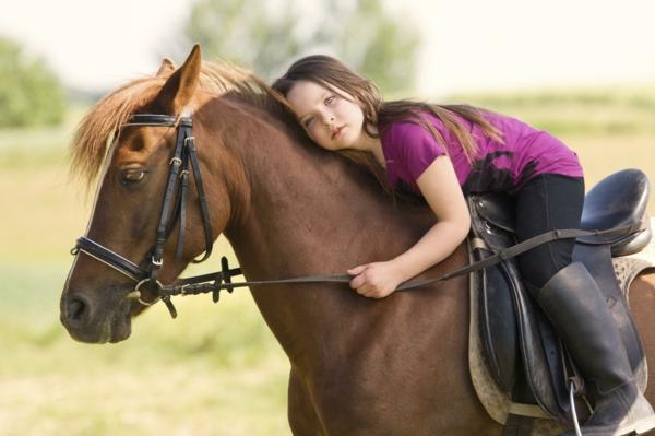 tiergestützte pedagogik tiere als therapie pferd tiertherapie