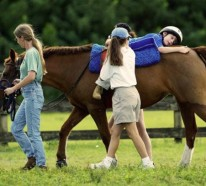Tiertherapie hilft! Tiere haben eine heilende Wirkung auf Menschen