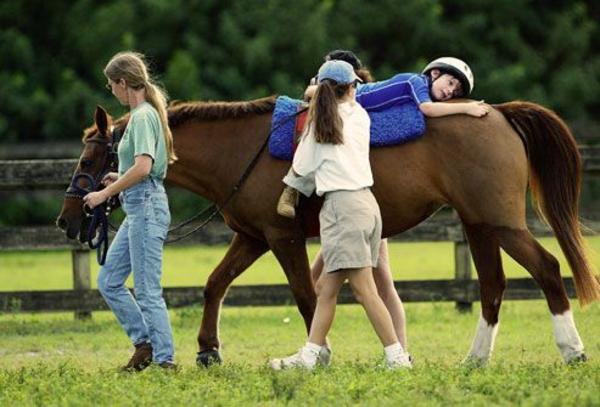 tiergestützte therapie tiere als therapie pferd tiertherapie