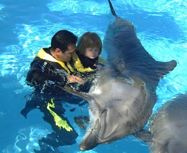 tiertherapie delfin delfintherapie tiergestützte pedagogik
