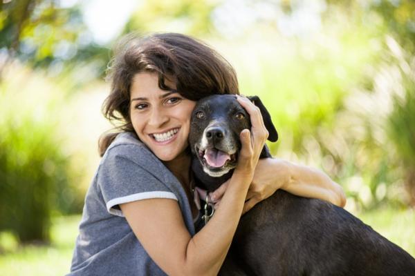 tiertherapie hund als freund tiergestützte therapie tiere
