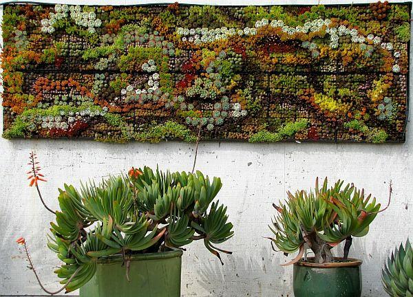 Einmalige wandgestaltung ideen f r einen festen eindruck for Pflanzen wanddeko