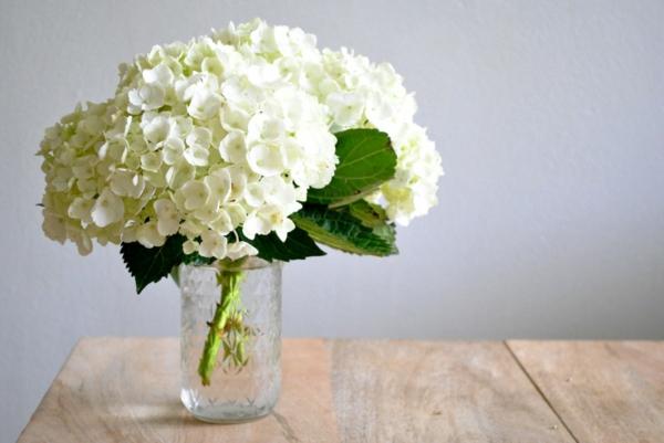 weiße hortensie blumenvase tischdeko blumen