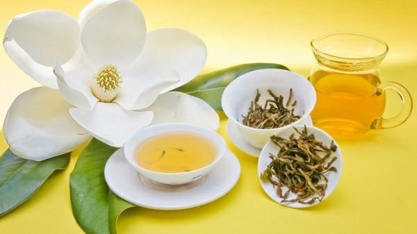 weißer tee wirkung tasse blume kräuter gesund leben
