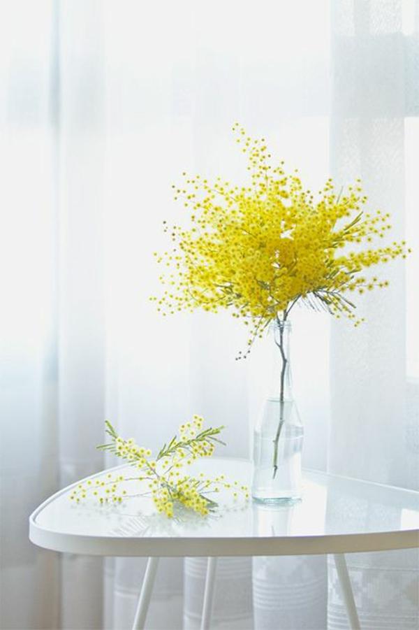 zimmerpflanzen deko tischdeko mimose blumenvase