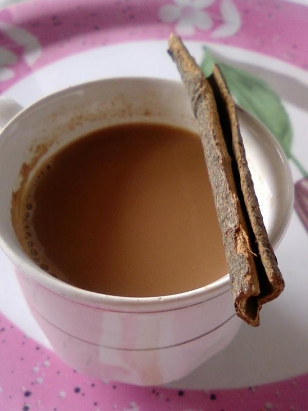 zimt gesund tee zubereiten gesunde getränke