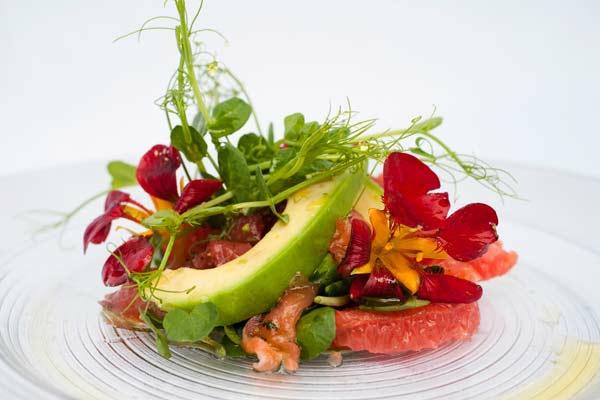 avocado rezepte frischer salat essbare blüten sprosslinge