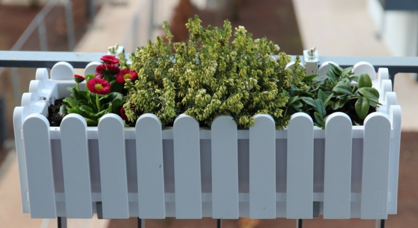 balkonbepflanzung balkongeländer befestigter weißer blumentopf