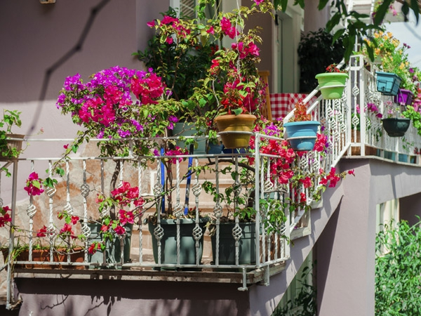 balkonbepflanzung ideen frische gestaltung balkon ideen