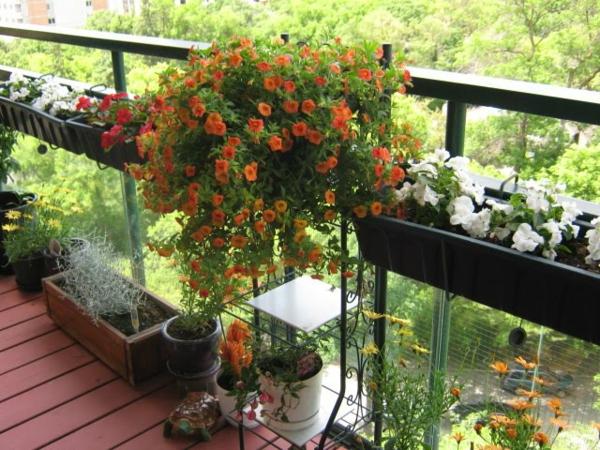 balkonbepflanzung ideen schöne blumen balkon gestalten