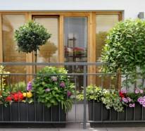 Balkonbepflanzung – Den Balkon vor Freude strahlen lassen!