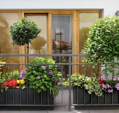 Balkonbepflanzung U2013 Den Balkon Vor Freude Strahlen Lassen!