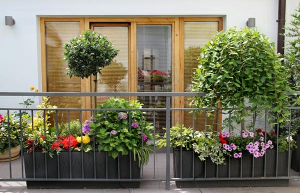balkonbepflanzung ideen elegante balkongestaltung schöne blumen