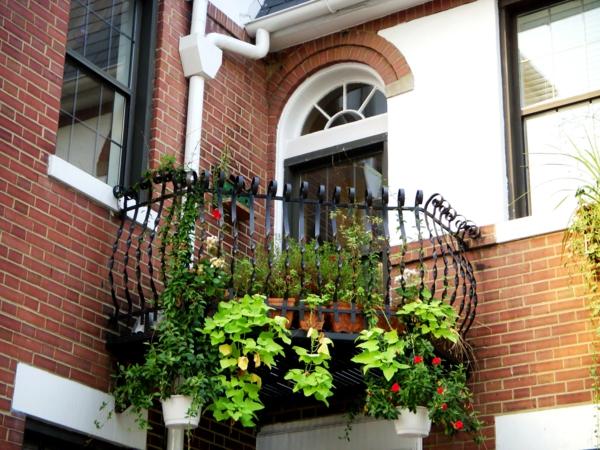 balkonbepflanzung kleinen balkon gestalten