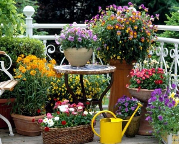 fr hlingserwachen auf dem balkon mit den passenden balkonpflanzen. Black Bedroom Furniture Sets. Home Design Ideas